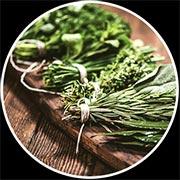 Herbal Medcine Brisbane