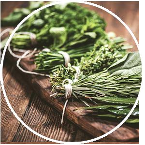 Herbal Medicine Brisbane