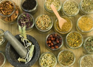 The Healing Power of Herbs